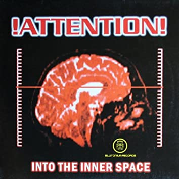 Into the Inner Space