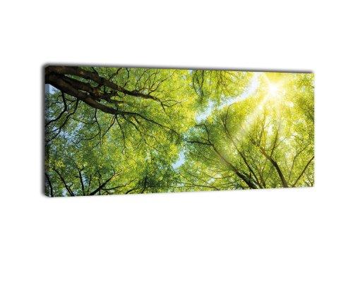 wandmotiv24 Leinwandbild Panorama Nr. 339 Baumkronen 100x40cm, Keilrahmenbild, Bild auf Leinwand, Wald Natur Geäst