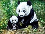 zqyjhkou DIY-5D-Diamond Painting Panda 5D Diamond Painting Craft Kit para jardín Infantil Decoración de la habitación 40x55cm(Sin Marco) Diamante Redondo