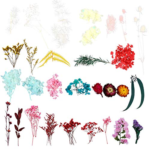 EXCEART 3 Packs Real Dried Pressed Flowers DIY Multiple Rose Dandelion Natural Dried Flowers Leaves Set Flower Herbs kit for Craft Soap Candle Making (Mixed Color)