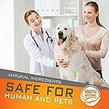 Zoom IMG-1 collare antipulci cane impermeabile design