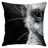 Cup Off Throw Pillow Cover Funda de Almohada de Suricata en Blanco y Negro Funda de cojín Decorativa para sofá, Dormitorio, Sala de Estar, 45 × 45 cm