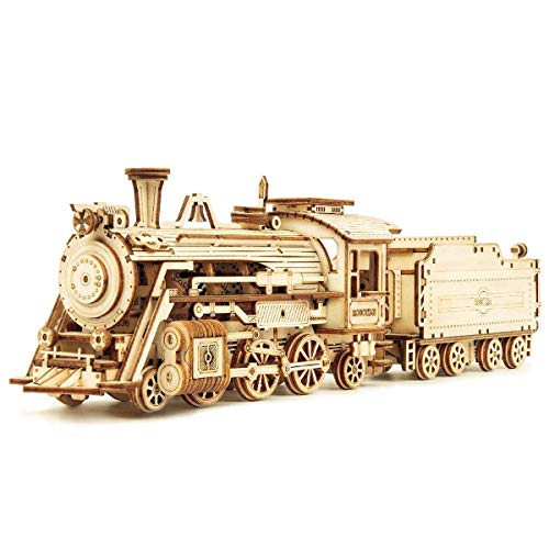 ROKR 3D Wooden Puzzle for Adults-Mechanical Train Model Kits-Brain Teaser Puzzles-Vehicle Building Kits-Unique Gift for Kids on Birthday/Christmas Day(1:80 Scale)(MC501-Prime Steam Express)