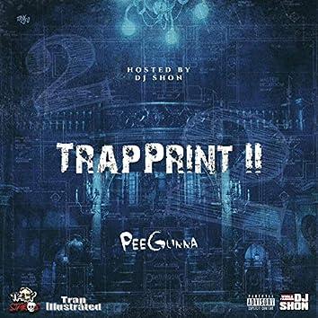 Trapprint 2