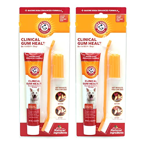 Arm & Hammer for Pets Clinical Gum Health Kit for Dogs, Toothpaste for Dogs – Dog Toothbrush & Dog Toothpaste – Soothes…