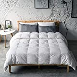 Antar Home Ultra Lightweight All Season Down Comforter, Duvet Insert Queen, 100% Cotton Shell, Real Filling White Down, Hypoallergenic (White)