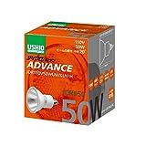 ウシオライティング 電球 JDRφ50ダイクロハロゲン ADVANCE 1箱(10個)