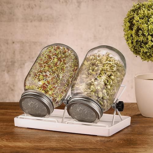 ecooe Juego de 2 tarros de cristal germinado para brotes de cristal, con 1 recipiente para agua, 2 cubiertas de rejilla...