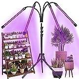 Aiyivve Lampe de Plante, 40W Lampe de Croissance pour Plantes 80LED Lampe Plant avec...