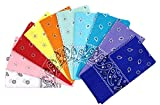 Vamqor 100% Cotton 10 Pack Fine Bandanas(Summer...