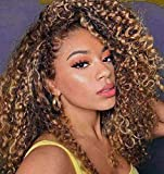 Ombre Dark Blonde Curly Lace Front Synthetic Wig for Women, 18 inch Kinky Afro Curly Middle Part Wigs Half Hand Tied Hairline Natural Color (18 inch, Ombre Blonde)