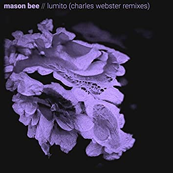 Lumito (Charles Webster Remixes)