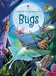 Usborne Books Bugs (Young Beginners)