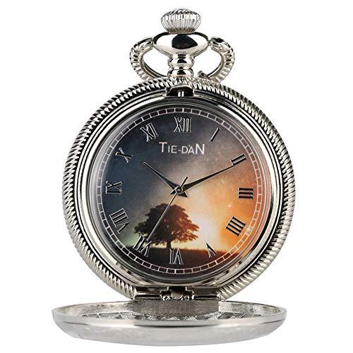 J-Love Reloj de Bolsillo Hueco Vintage, Collar de Plata de Cuarzo, Cadena de números Romanos, Esfera de visualización, Reloj de Bolsillo Exquisito para Hombres, Mujeres, niños