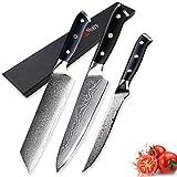 PPLAS Cuchillos Cocina Damasco Kitchen Kniers Sets 3 PCS Cuchillo de Cocina Set Chef Boneing VG10 Japonés Steel Damasco Cuchillo Pro Cocina Herramientas de Cocina Profesional (Color : A)