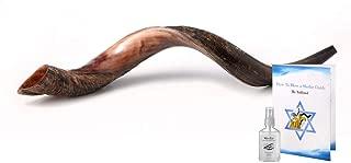 toy shofar