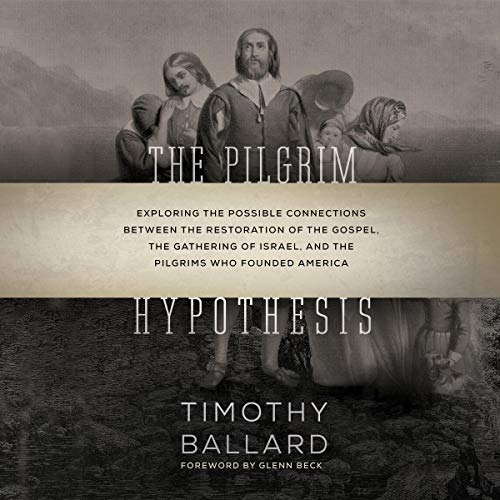 The Pilgrim Hypothesis cover art