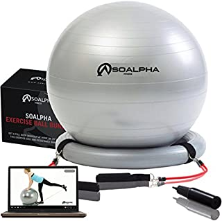 bally total fitness exercise ball