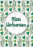 Mein Herbarium: Großes Buch zur Pflanzenaufbewahrung | mit vorgefertigten Etiketten zur Pflanzenbestimmung | ausreichend Platz für getrocknete Blüten und Blätter