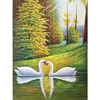 DIY 5Dダイヤモンド塗装クロスステッチダイヤモンド 白鳥の写真F34 ラインストーンペインティングキットartart壁の装飾-(12x16インチ)