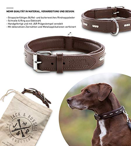 Jack & Russell Premium Leder Hunde Halsband Romeo - Original Leder Halsband mit Nieten - Halsband Romeo (S, Braun)