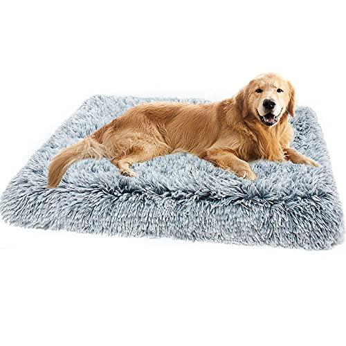 cuccia cane 40 kg Cuscino Cane Grande in Memory Foam - Cuccia per Cani Gatti con Cuscino Peluche Ultra