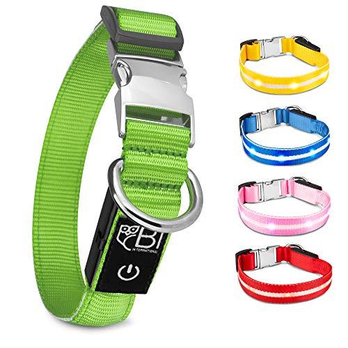 BI International® Hundehalsband Leuchtend & Aufladbar – Wasserdichtes LED Leucht–Halsband für Hunde aus Verstärktem Nylon - Hochwertig & Sicher Dank Innovativem Metallverschluss
