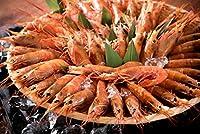 港ダイニングしおそう 赤海老 2kg(約40-60尾入り) アルゼンチン赤海老 天然 赤エビ