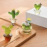 Meideli 6pcs Crystal Cactus Mini Cactus Decor Suncatcher Dashboard Decorations Crystal Figurines Collectibles Desk Decorations 6PCS
