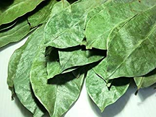 Organic Graviola Leaves/Soursop Leaves(guanabana)1000lves-by Purelife Herbs
