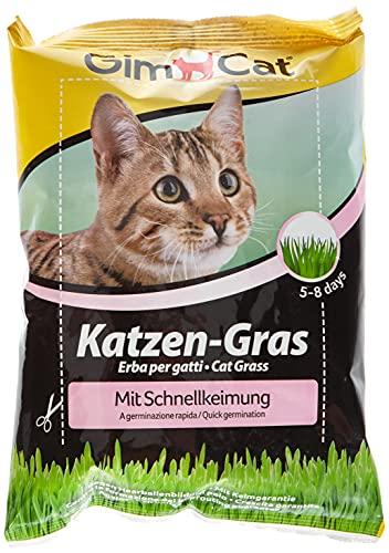 GimCat hierba de rápida germinación para gatos - Hierba para gatos de plantación...