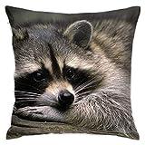 Affordable shop Enot Makro - Funda de cojín decorativa para el hogar, sofá, cama, coche, 45,72 x 45,72 cm