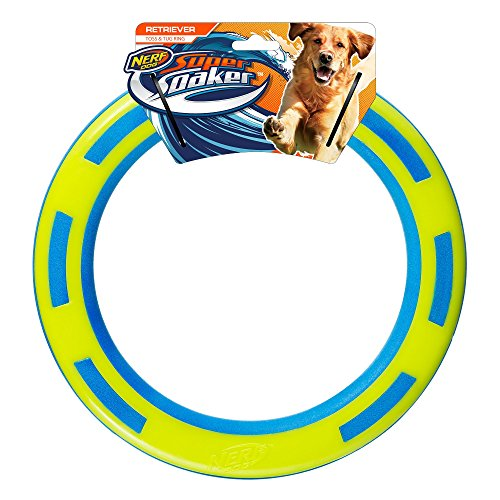 Nerf Dog Rubber & Foam Ring Dog Toy, Frisbee, Lightweight, Durable and Water Resistant, 9 Inch Diameter, for Medium/Large Breeds, Single Unit, Blue/Green