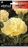 Semillas de Flores - Clavel Chabaud Doble amarillo - Batlle