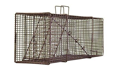 Northern Industries Professional Live Raccoon Trap - Single Trap Door with Rear Release Door - (10x12x32) T101232PR