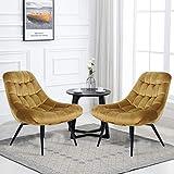 oneinmil Set of 2 Velvet Accent Chair, Living Room Single Sofa...