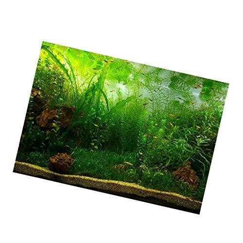 F Fityle Lebendige Einseitig Klebende Dauerhafte Aquarium Wanddekorationen Aufkleber Selbstklebende Poster Aquarium Hintergrundbild - Wasserpflanzen, S