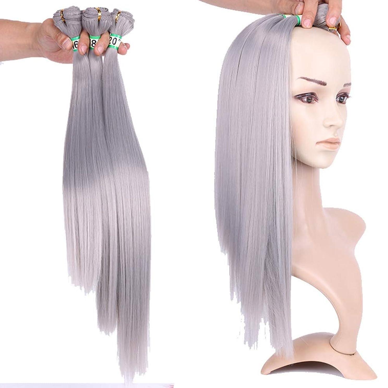 HOHYLLYA おばあちゃんの灰ストレート合成髪織りバンドルヘアエクステンション - シルキーストレートヘアコンポジットヘアレースかつらロールプレイングウィッグロングとショートの女性自然 (色 : Grandma ash, サイズ : 18