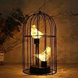 JHY DESIGN Birdcage Decorative Lamp Battery Operated 12' Tall Cordless Accent Light with Warm White Fairy Lights Bird Bulb for Living Room Bedroom Kitchen Wedding Xmas(Black)