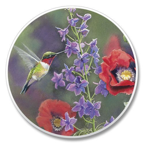 Absorbastone Absorbant Car Auto Cup Holder Coaster Hummingbird & Floral