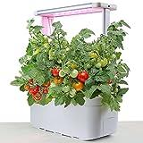eSuperegrow Hydroponics Growing...image