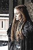 WOAIC Game of Thrones Season 7 Sansa Stark Poster for Bar