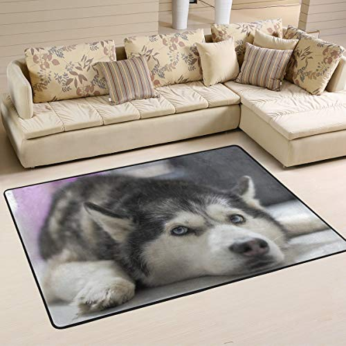 FAJRO Hund Husky liegendes Bild Schlamm Schuh Schaber Bereich Teppich Eingang Weg Fußmatte Multimuster Fußmatten Home Dec Anti-Rutsch Indoor/Outdoor, Polyester, 1, 36 x 24 inch