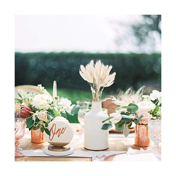 XHXSTORE 60PCS Flores secas Naturales Pampas Hierba para Boda Hogar DIY Arreglo de Mesa de Flores Navidad-Blanco