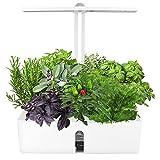 SEAAN Système de Culture hydroponique, Kit de Germination de Jardinage intérieur à 9 Trous avec...