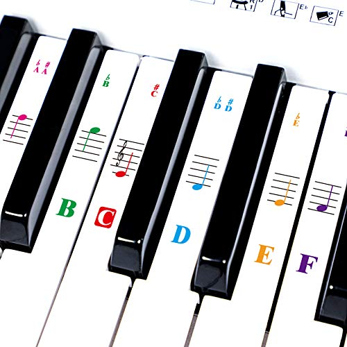 Piano keys Stickers for 88/61/54/49/37 Key. Transparent Removable,Colorful Thinner Material,with Cleaning Cloth