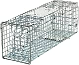 Best Raccoon Traps - HomGarden Live Animal Trap Catch Release Humane Rodent Review