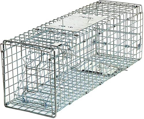 HomGarden Live Animal Trap Catch Release Humane Rodent Cage for Rabbit, Groundhog, Stray Cat,...