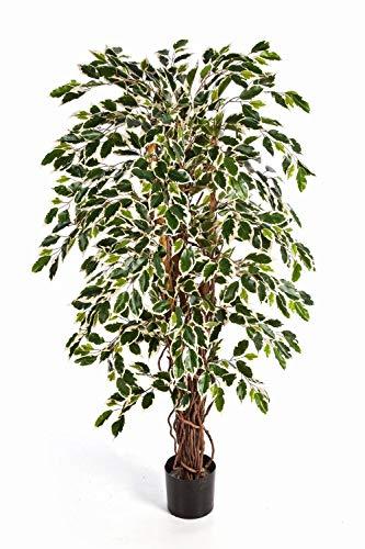 artplants.de Set 'Ficus Artificial + Spray de protección UV' - Árbol ficus de imitación JARLAN, Troncos Naturales, Verde-Blanco, 180cm