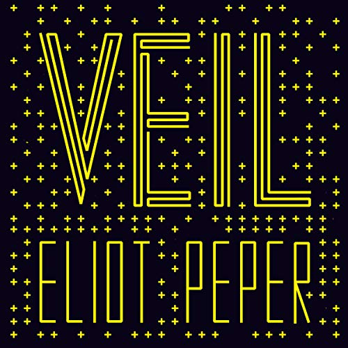 Veil  By  cover art